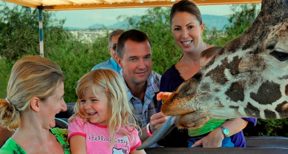 Sedona Area Tourist Attractions