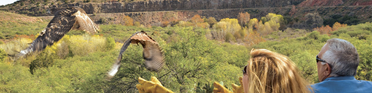 Sedona Wildlife Tours