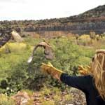Wildlife Sedona