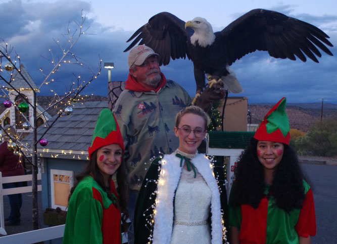 princess-eagle-elves-